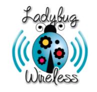 Ladybug Wireless rural internet